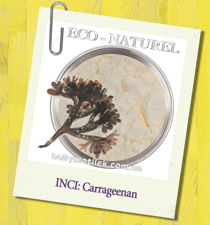 the characteristics and use of carrageenans